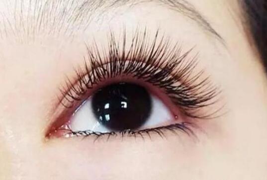 睫毛养护周期
