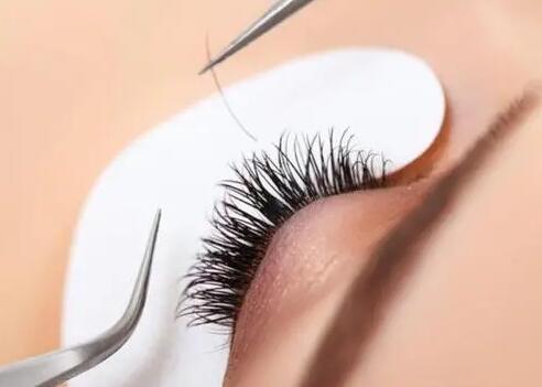 睫毛种植后能维持多久